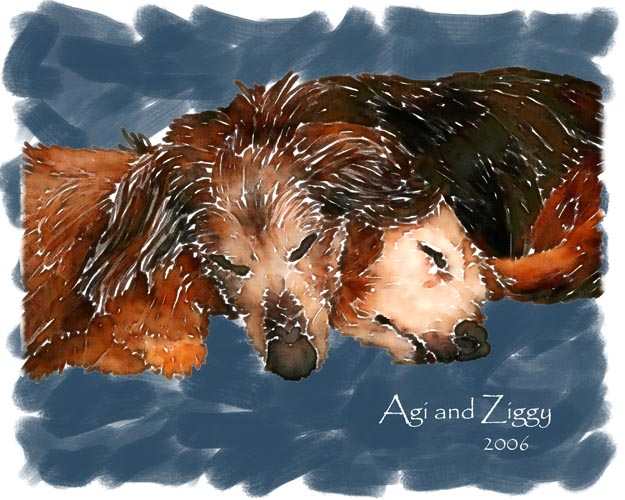 Agi and Ziggy were John's wife Beth's first dogs; John made this large art piece that captured a touching moment as the two dachshunds shared a nap.