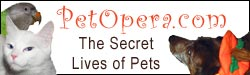 PetOpera.com: The Secret, Seedy Lives of Pets